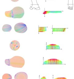 projected 2d streamlines in m s on longitudinal sections of the download scientific diagram [ 746 x 1189 Pixel ]