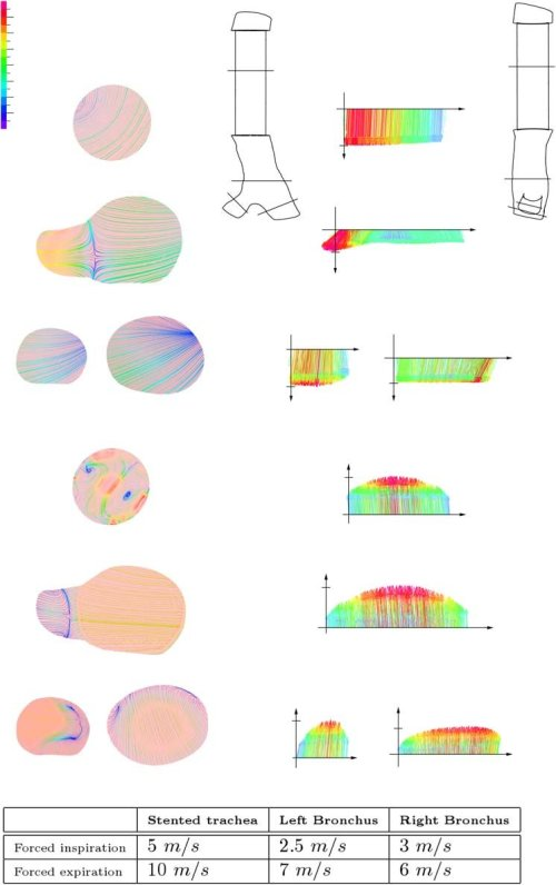small resolution of projected 2d streamlines in m s on longitudinal sections of the download scientific diagram