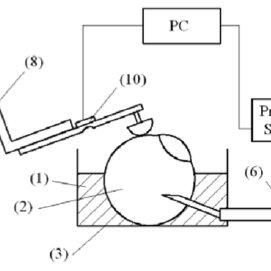 Calibration curve for bending beam load cell force sensor