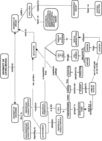 Concept map on biological inheritance and the evolution of