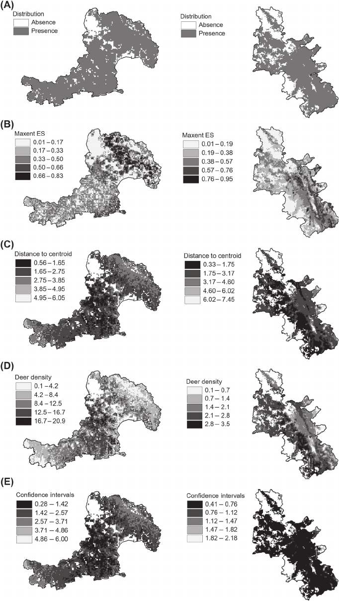 White-tailed deer maps of: (A) geographic distribution, (B