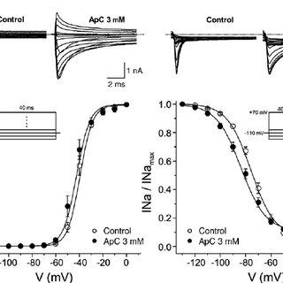 (PDF) Effects of APC, a sea anemone toxin, on sodium