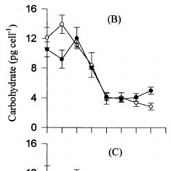 (PDF) Protein, carbohydrate, lipid and chlorophyll a