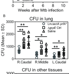 respiratory immunization of v 2v 2 t cells reduced tissue bacterial burdens after mtb challenge a [ 734 x 1628 Pixel ]