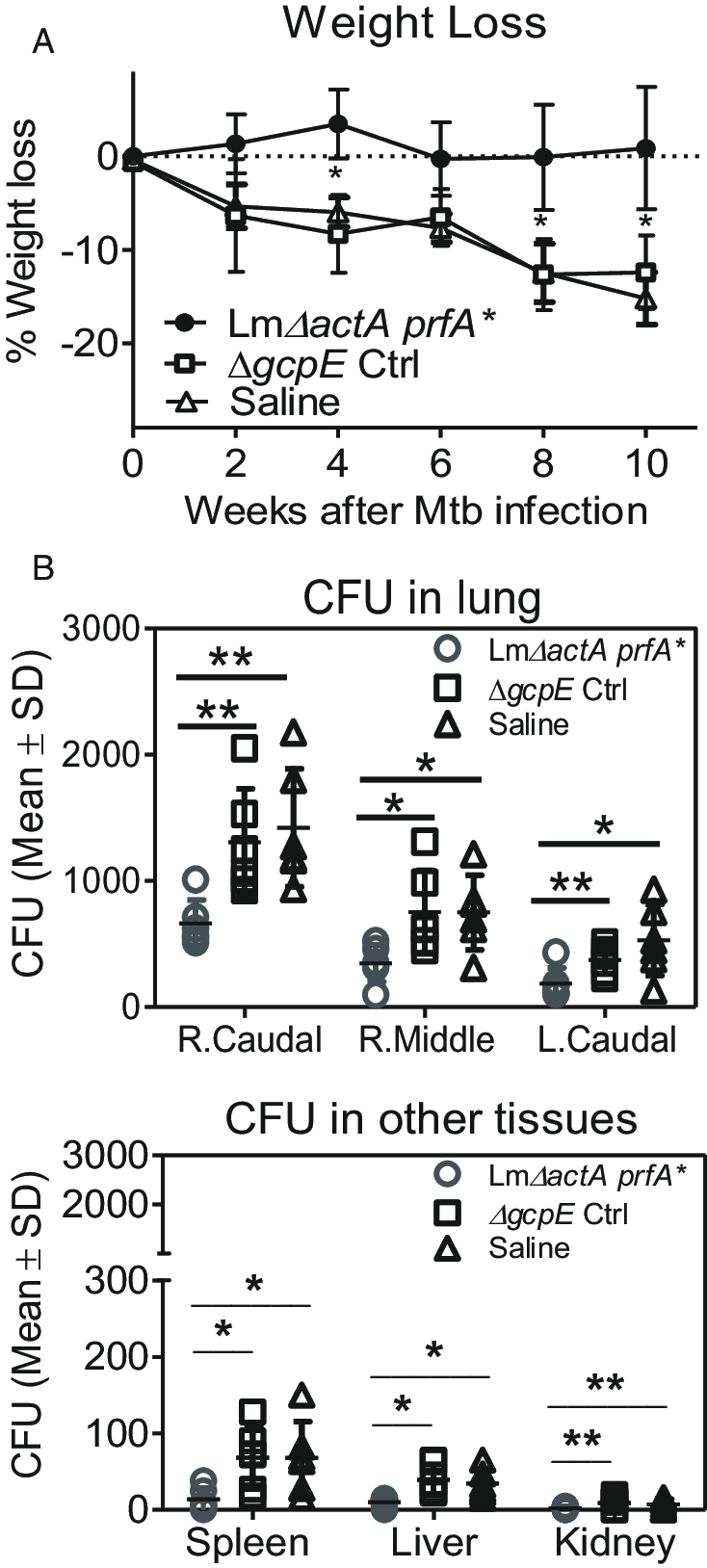 hight resolution of respiratory immunization of v 2v 2 t cells reduced tissue bacterial burdens after mtb challenge a