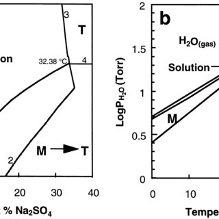 (PDF) How Does Sodium Sulfate Crystallize? Implications