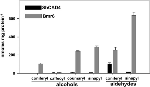 Enzyme activity of Bmr6 and SbCAD4 for different cinnamyl