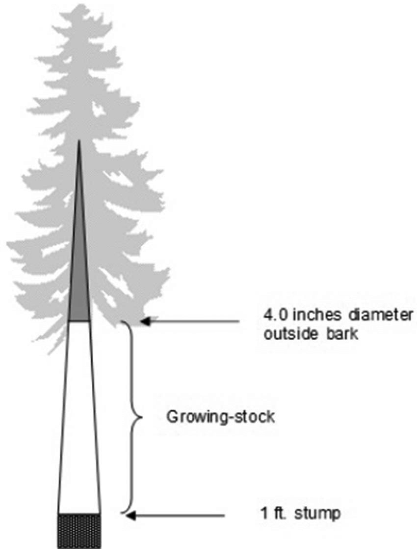 medium resolution of individual tree growing stock growing stock includes live tree sections from the 1 ft