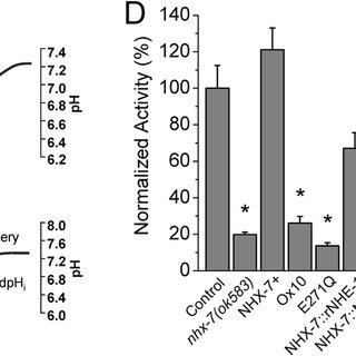 (PDF) Analysis of Ca2+ Signaling Motifs that Regulate