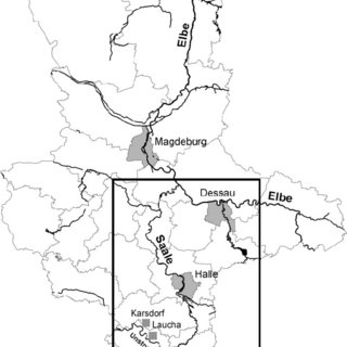 (PDF) Effects of invasive benthic macroinvertebrates on