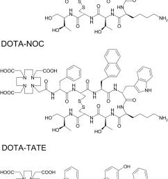 structural formula of dotatoc dota 0 tyr 3 octreotide dotanoc download scientific diagram [ 834 x 1436 Pixel ]