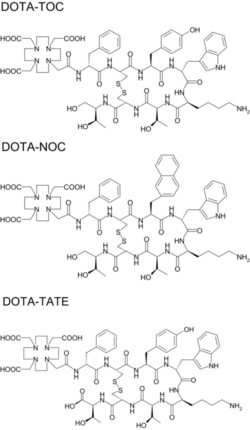 small resolution of structural formula of dotatoc dota 0 tyr 3 octreotide dotanoc download scientific diagram