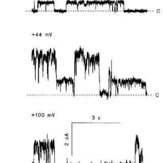 (PDF) Clusters of Cl − channels in CFTR-expressing Sf 9