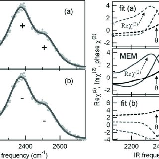 MEM analysis of a THz waveform recorded for the Bloch