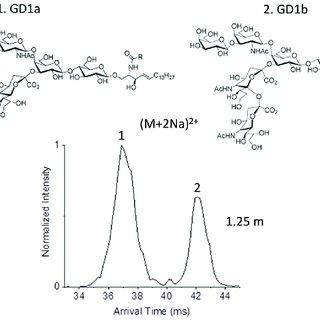 (PDF) Lipid and Glycolipid Isomer Analyses Using Ultra