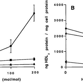 (PDF) Identification of the human analog of SR-BI and LOX