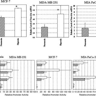 (PDF) Tumor-specific gene expression using the survivin