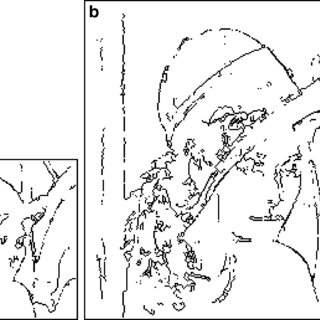 (PDF) Edge detection using ant algorithms