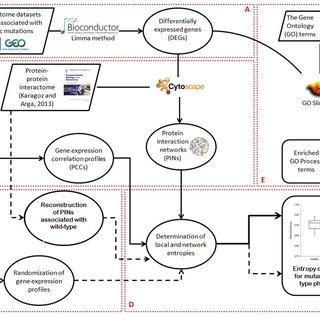 Box-plot representation of comparative analysis of network