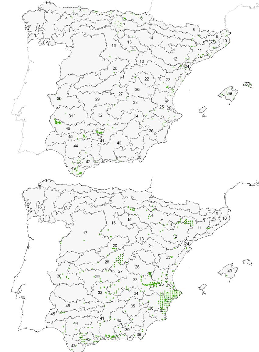 medium resolution of distribuci n de rhamnus alaternus superior y rh lycioides inferior