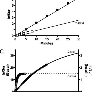 Determination of k en Glut4 (insulin dose response