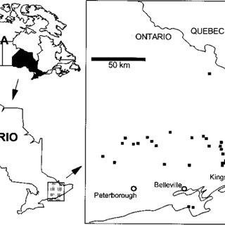 (PDF) Diatom-environmental relationships in 64 alkaline