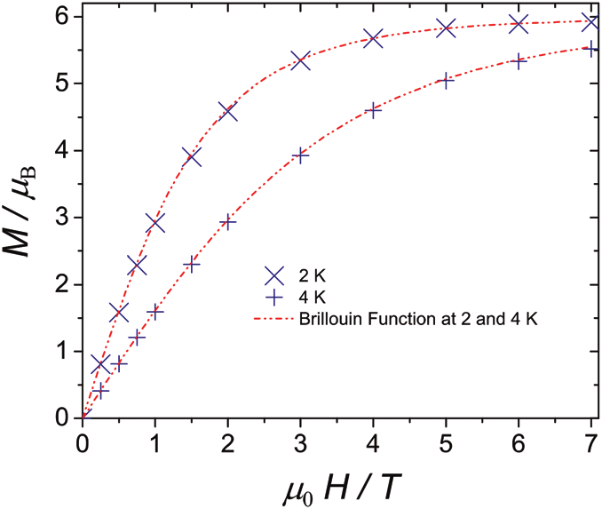 Magnetisation of complex 1 and Brillouin function (red