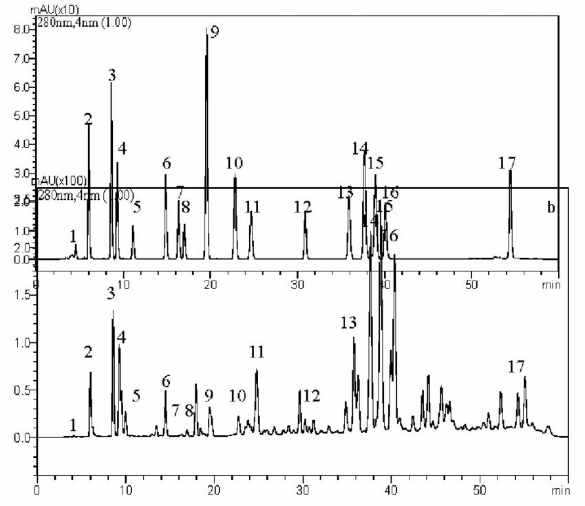 Chromatogram of standard solution at 280 nm: (a) 1-Rutin