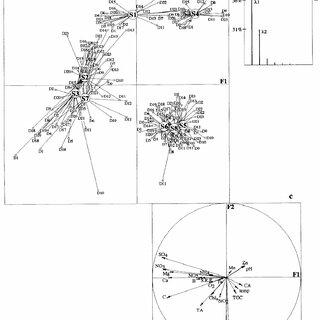 (PDF) Responses of the planktonic diatom Asterionella
