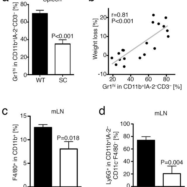 Adoptive transfer of L-Tg mice can lead to fibrostenotic