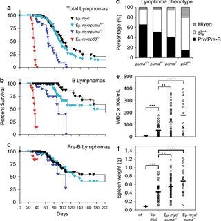Loss of Puma accelerates lymphoma development in E-myc