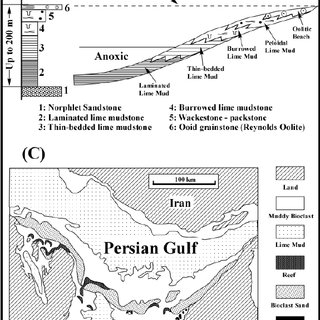 (PDF) Sequence Stratigraphy of the Smackover Formation in
