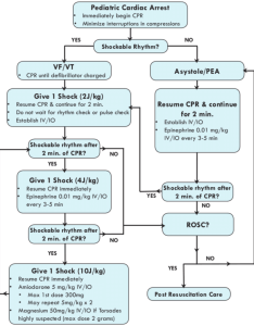 Algorithm for management of pediatric cardiac arrest  epinephrine dosing chart also topsimages rh