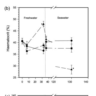 (PDF) Lack of long-term sublethal effects of reduced