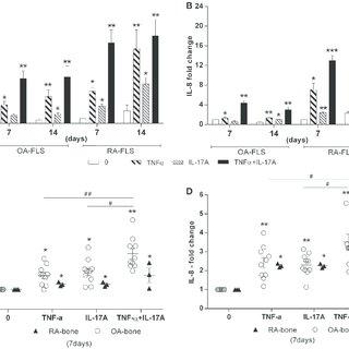 Effects of TNF-α and IL-17A on IL-6 and IL-8 production