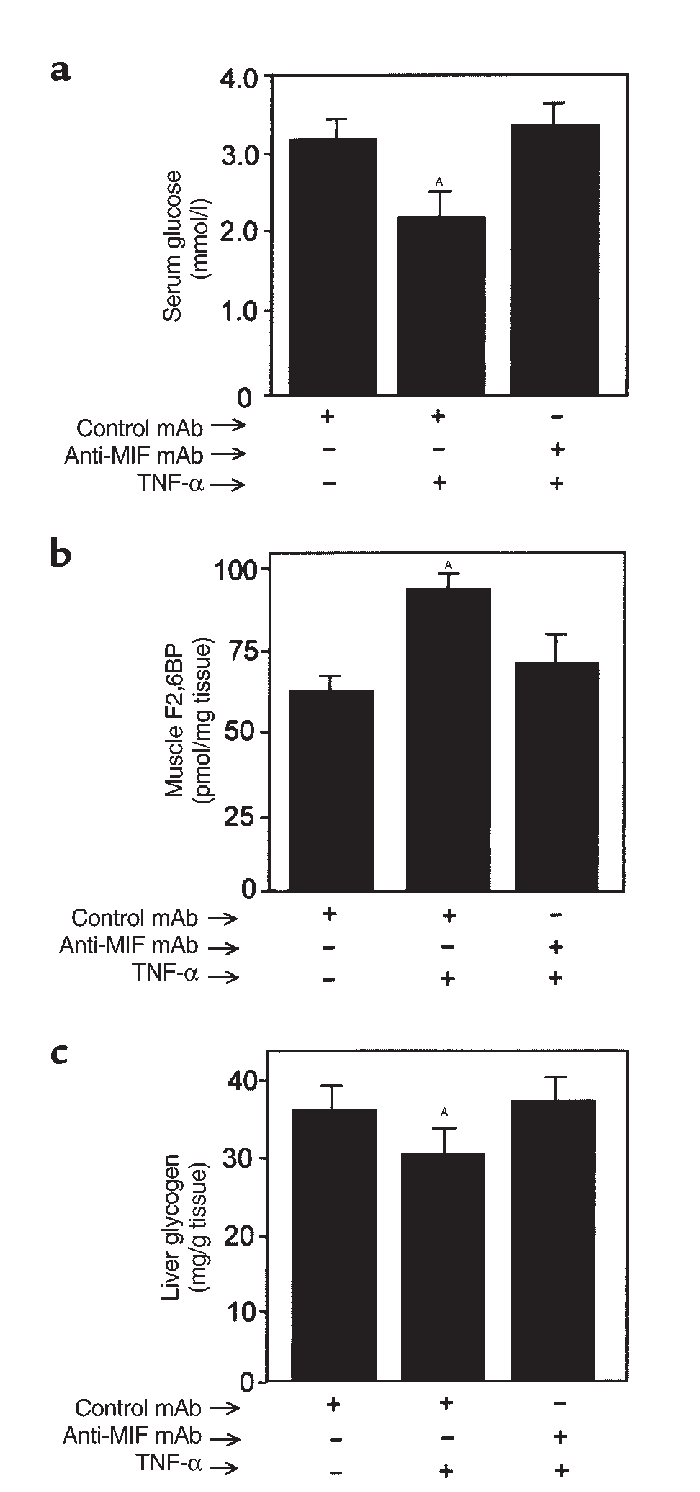 (a) Serum glucose, (b) muscle F2,6BP, and (c) liver