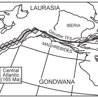 (PDF) Alpine ocean seafloor spreading and onset of pelagic