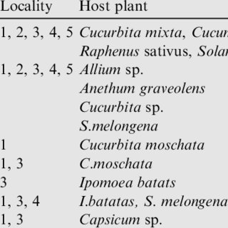 (PDF) Phytophagous and predaceous mites associated with