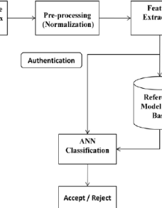 Flowchart of the proposed biometric system also download scientific rh researchgate