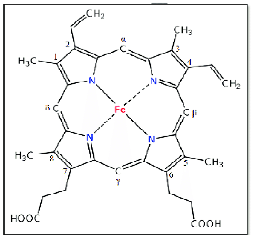 Structure of ferri-protoporphyrin IX (haem). The modified