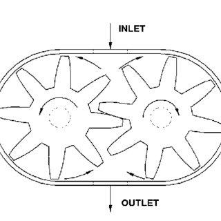 Schematically representation for external gear pump