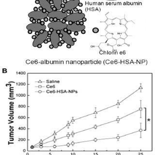 Antitumor efficiency in H22 tumor-bearing mice. a) Tumor