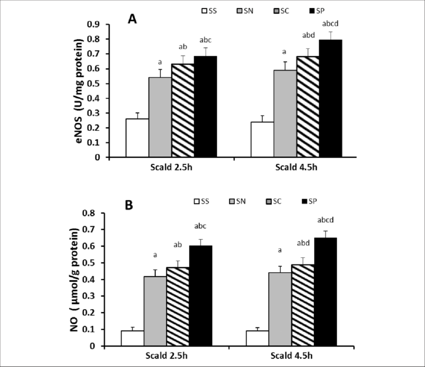 Pyruvate enhanced intestinal endothelial nitric oxide