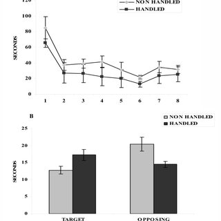 Effect of handling on food consumption during long term