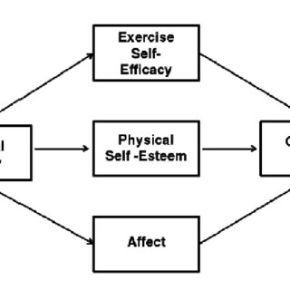 (PDF) Perceptions about physical activity and its