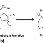 Sol Gel Synthesis Routes. Processes are defined as sol-gel