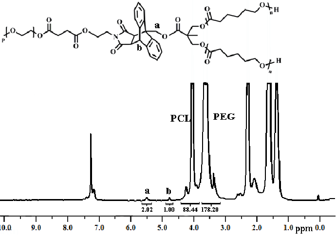 1 H-NMR spectrum of the Y-shaped PEG–(PCL) 2 block