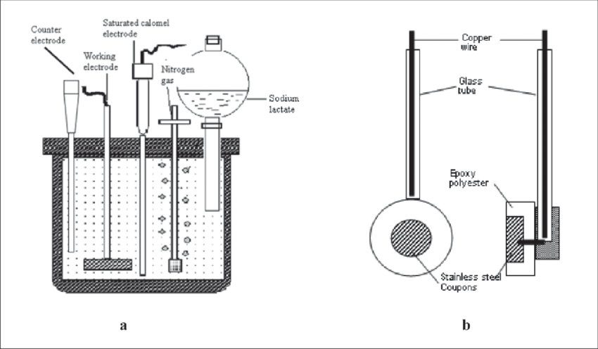 (a) Schematic diagrams of electrochemical cell and (b