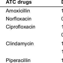 Classification of amoxicillin of the Anatomical