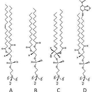Langmuir-Blodgett principle, (B) Theoretical isotherm (Π-A